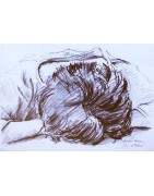 Drawings by Klaus Dobrunz